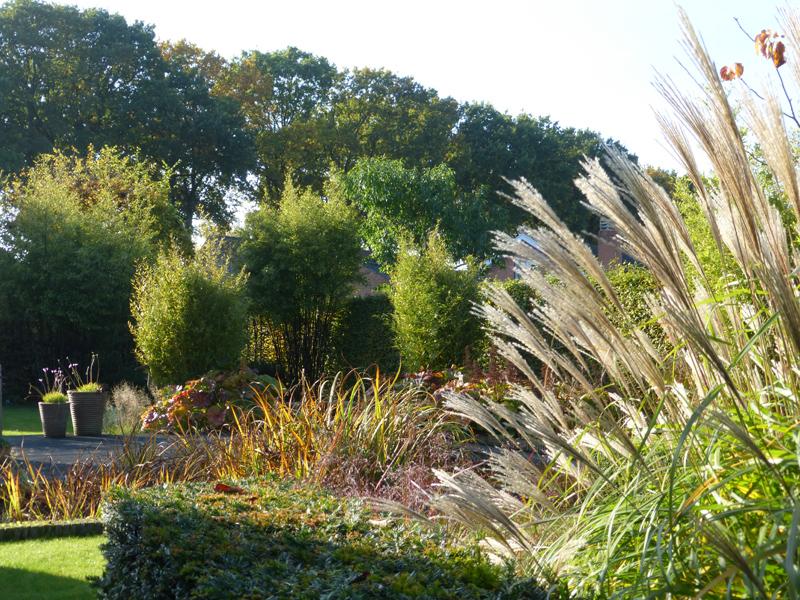 Landscape Architecture City Garden Jabbeke Belgium
